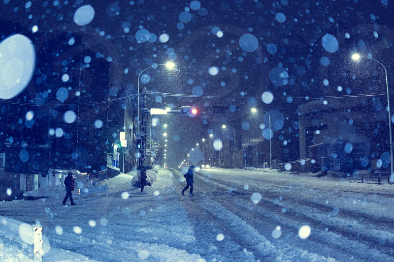 people walking on road covered in snow photo