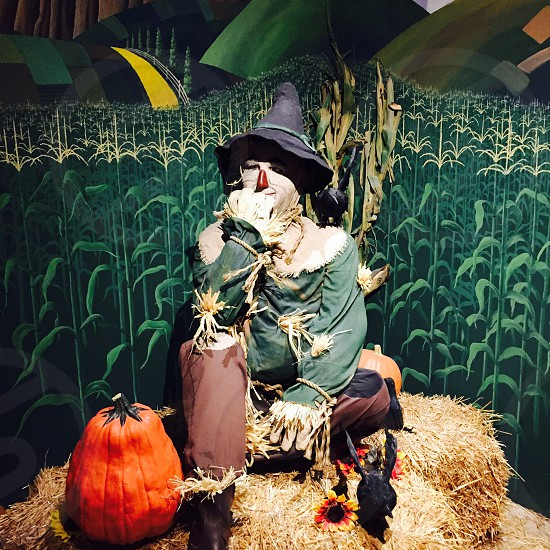 doll figure of scarecrow photo