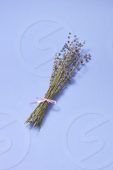 Decorative corsage from natural dry lavender flowers on the same color background with soft shadows place for text. Creeting card. photo