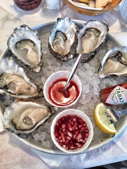 Food oysters ice sea lemon seafood photo