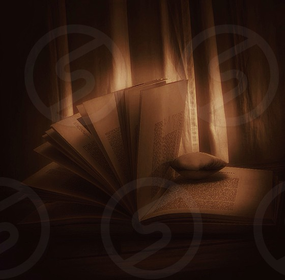 open book on table beside white pleated curtain photo