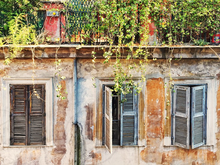 Three old windows with closed shutters and hanging plants photo