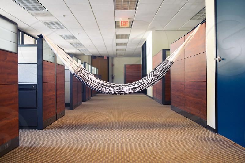 gray and white hammock photo