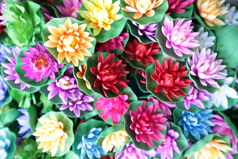 plastic flowers at a shop at the Chatuchak weekend market in the city of Bangkok in Thailand in Suedostasien. photo