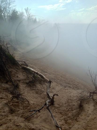 Lake Michigan sand dunes  photo