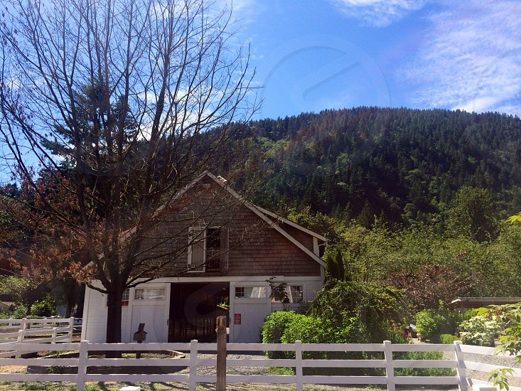view of brown and white barn overlooking green forest photo