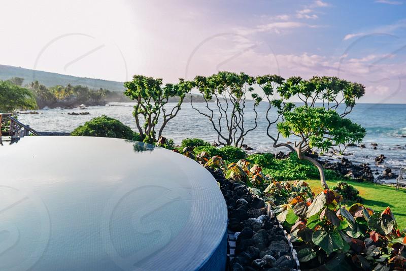 hawaii summer pool sun swim ocean beauty photo