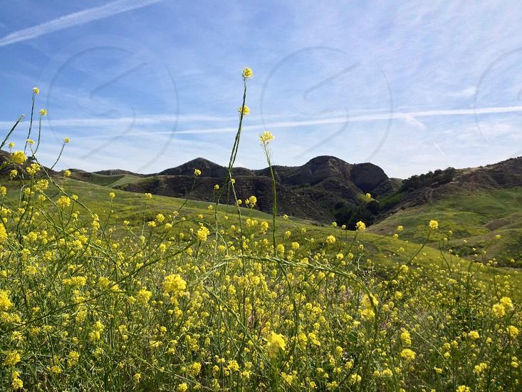 California hiking photo