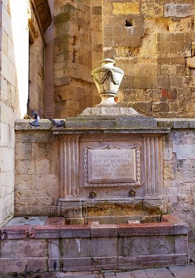 Leon Carlos IV fountain beside Plaza Mayor at Castilla Spain photo