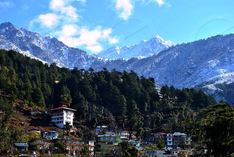 Dharamshala is a city in the Indian state of Himachal Pradesh. Surrounded by cedar forests on the edge of the Himalayas india this hillside city is home to the Dalai Lama photo