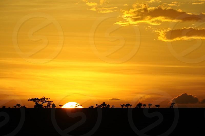 Sunrise in Tanzania Serengeti National Park Africa photo