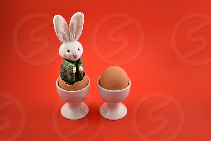 Easter bunny and egg. Easter bunny and egg on a red background. Easter bunny in an egg. Spring decoration images. Easter concept photo