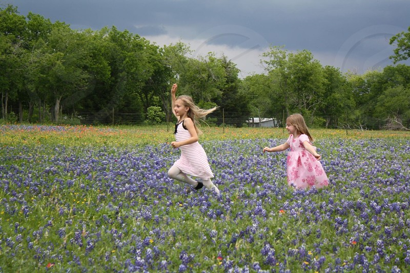 My daughters playing in the blue bonnets. photo