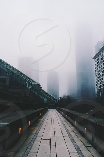 cityscape under white fog photo
