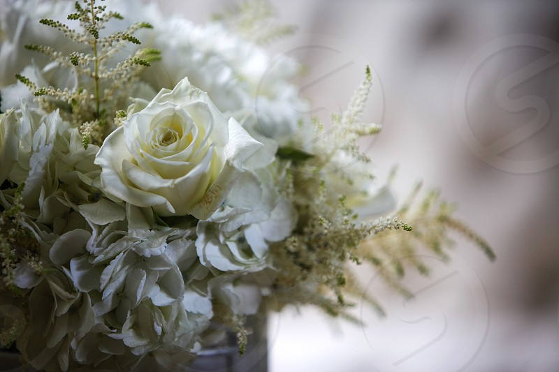 Flowers bouquet wedding white roses celebrate  photo