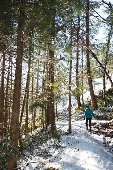 Scenic Winter Destinations photo