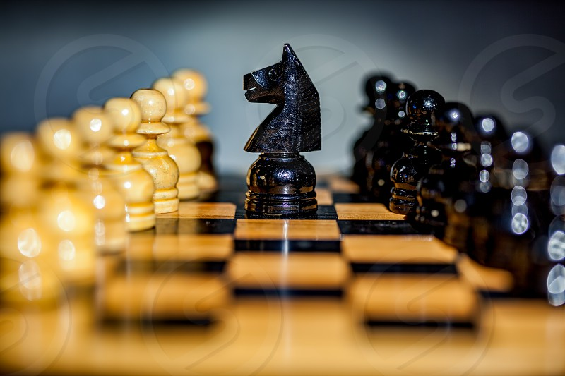 Close up of a black knight and pawns on a chess board photo
