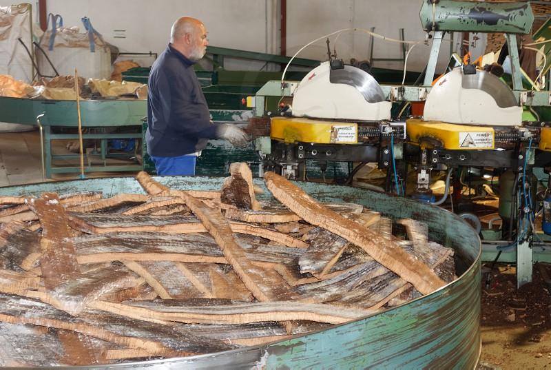 SAO BRAS DE ALPORTEL ALGARVE/PORTUGAL - MARCH 9 : Cork Factory in Sao Bras de Alportel Algarve Portugal on March 9 2018. Unidentified person photo