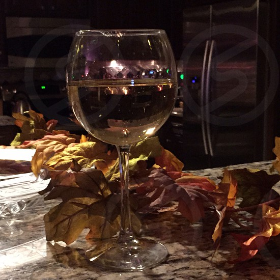 Thanksgiving; leaves; wine; glass photo