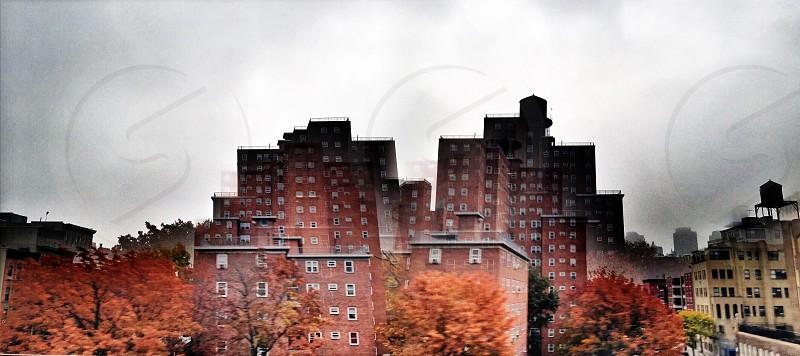 white sky over city buildings photo