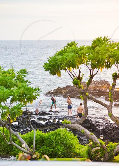 beach hawaii youth friends tropical photo