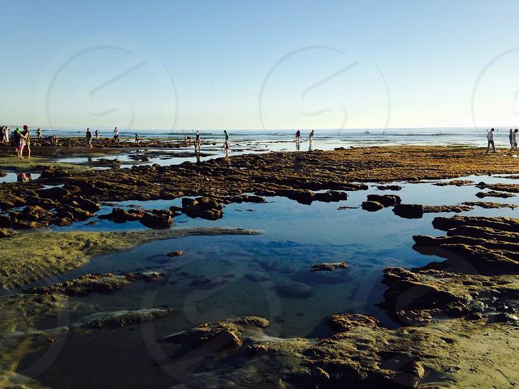 Low Tide Terramar 2014 photo