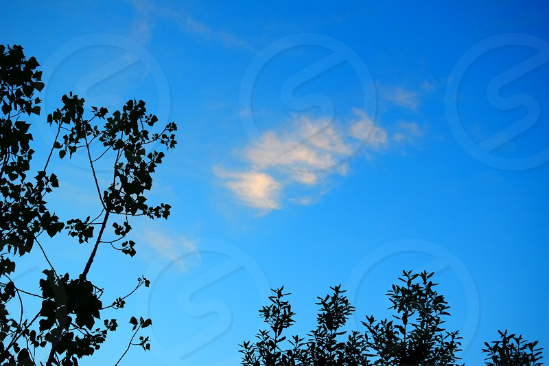 blue sky cloud silhouettes trees landscape outdoors nature  photo