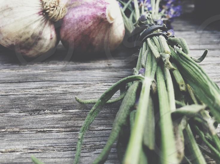 Lavender and garlic harvest photo