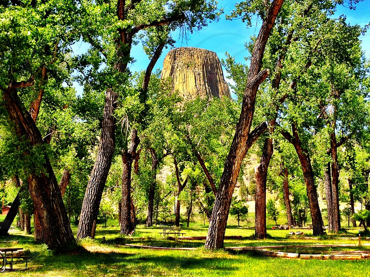 Camping campground Devils Tower close encounters of the third kind trees view grass nature hiking wilderness Wildwest photo