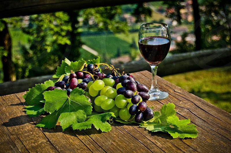 Nature organic wine red Glass love sunny day  photo