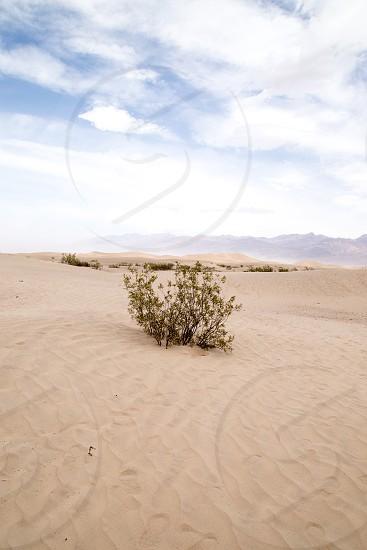 Death Valley CA photo