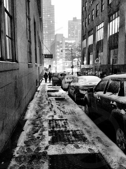 Snowstorm 2015 Manhattan  photo