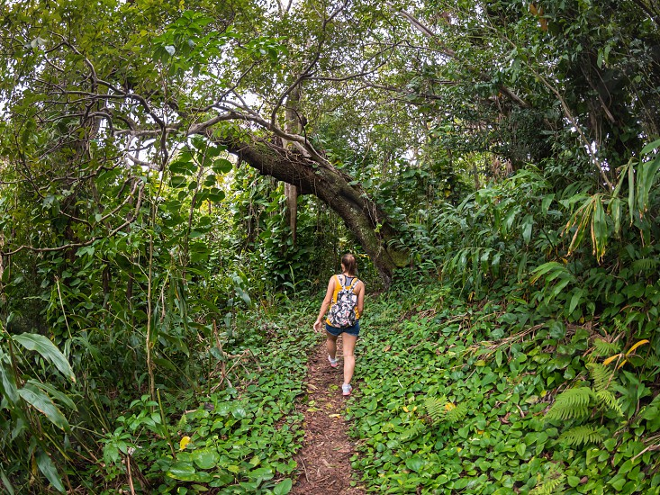 Woman walking on a trail hike in green nature environment outdoor lifestyle  photo