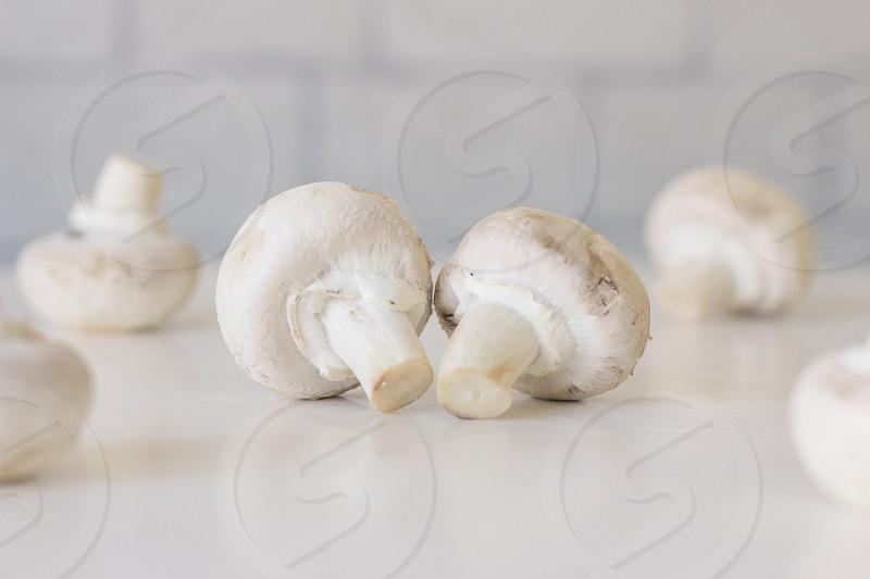 Champignon mushrooms on table white background photo