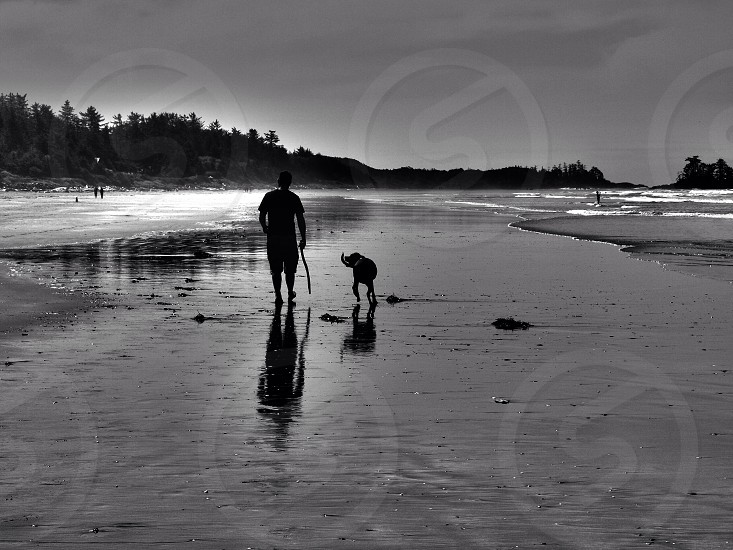 silhouette of man and dog walking on the seashore photo