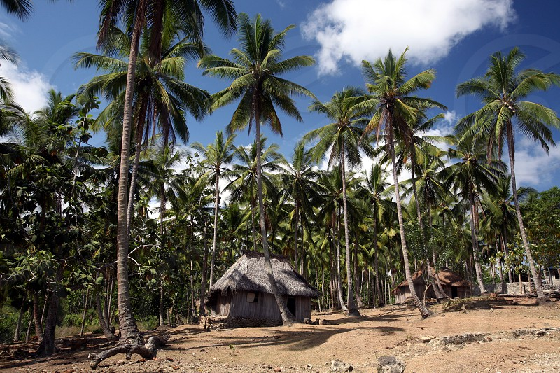 the landscape at the village of Viqueque in the south of East Timor in southeastasia.