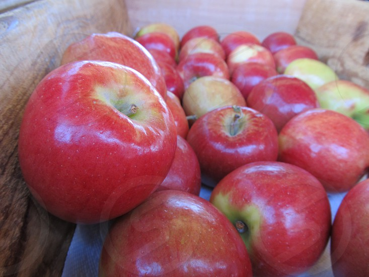 Red apples in box photo