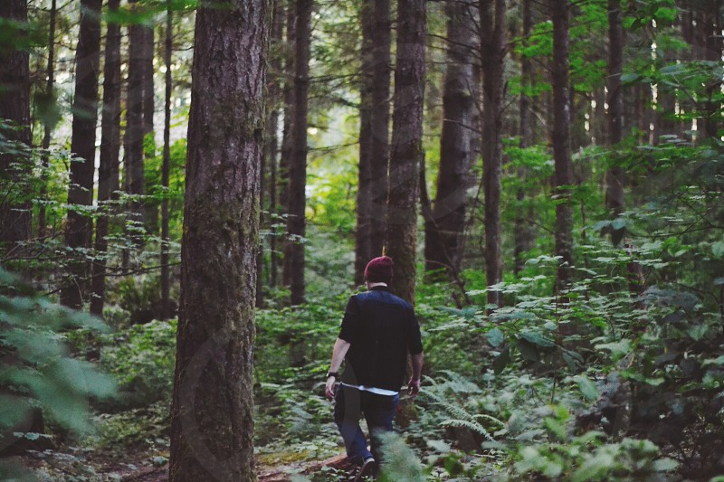 Exploration in the Pacific Northwest photo