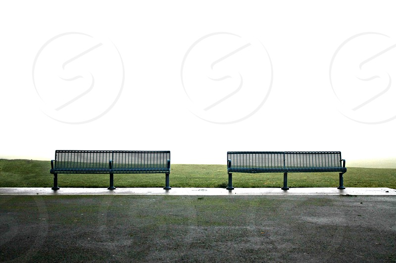 park benches morning fog green white grass photo