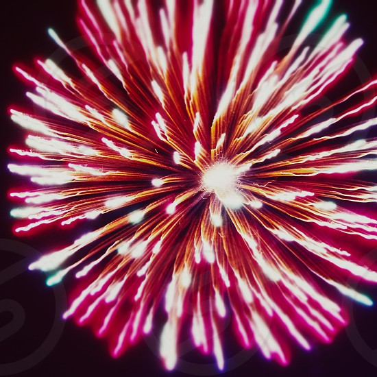 red and white dandelion shaped fireworks photo