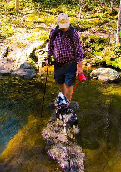 Hiking dog best friend stream  nature wonder lust photo