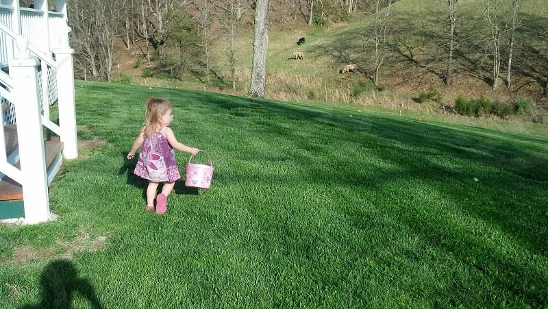 girl wearing purple dress holding purple bucket walking green grass during daytime photography photo