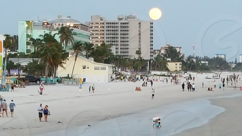 beach full moon photo