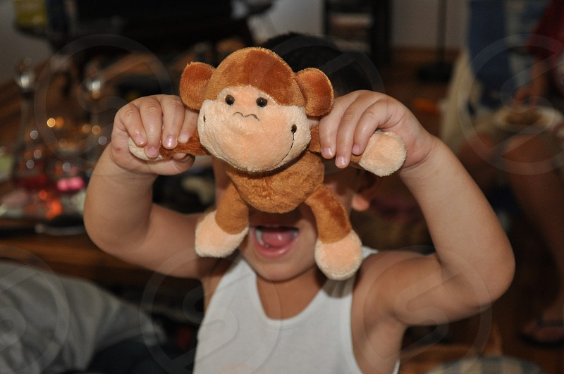 Toy monkey photo