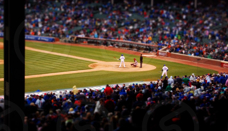 Chicago Cubs game photo