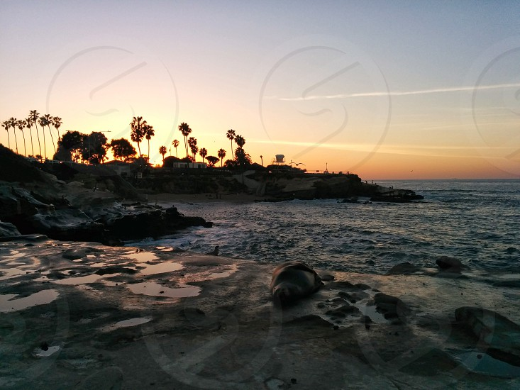 San Diego California  photo