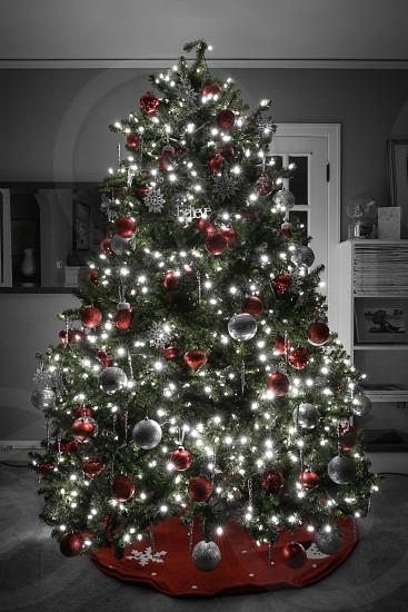Christmas Spirit - Believe photo