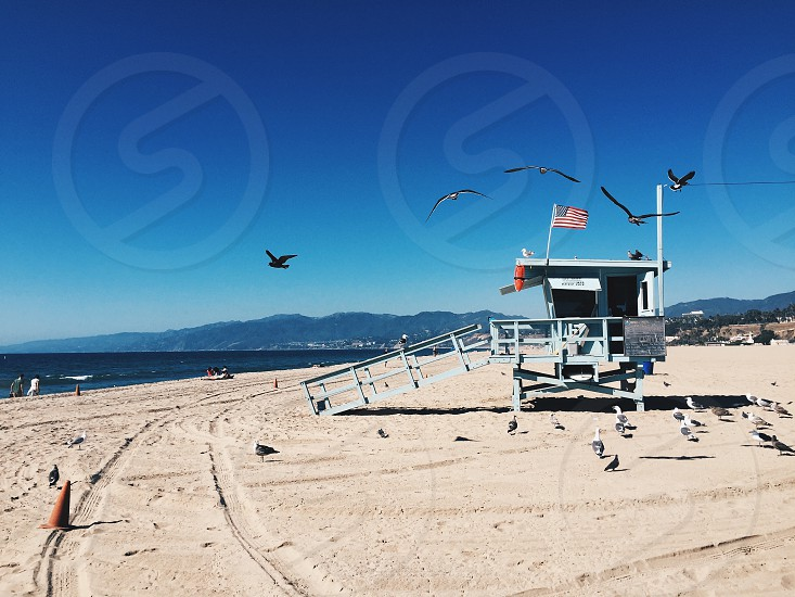 Santa Monica Lifeguard Hut photo