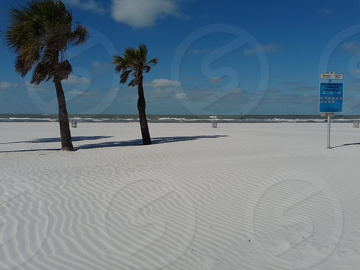 A Winter's View Clearwater Beach Florida photo