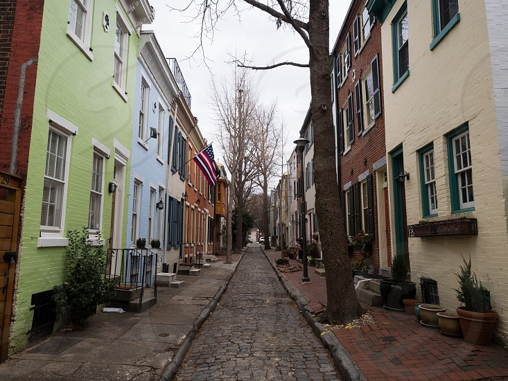 Cute street in Fitler Square photo